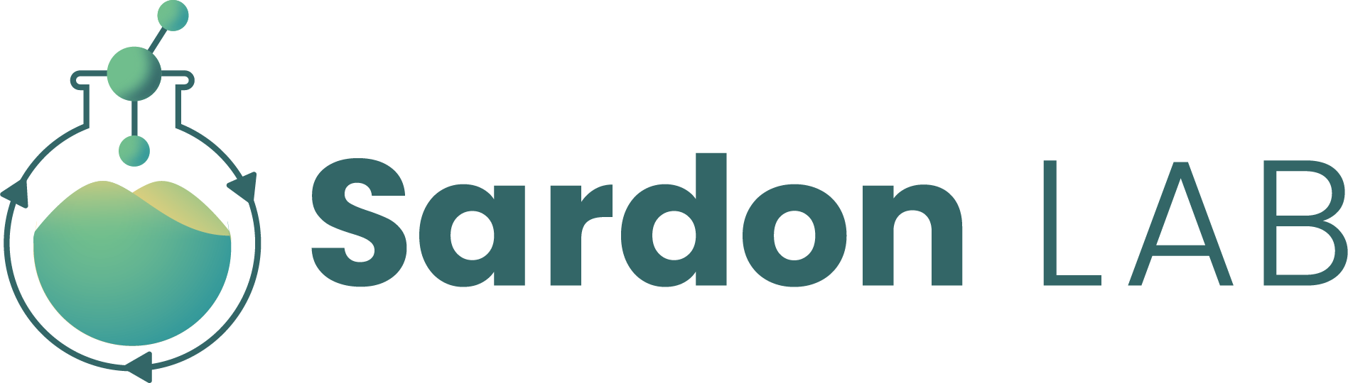 Sardon Lab