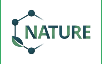 NATURE is looking for PhD candidates